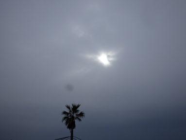 今日は冷たい雨の一日でした。