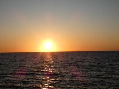 ここ数日は夕日がキレイです。