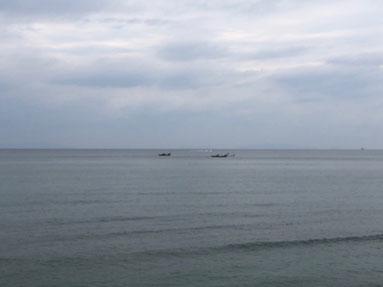 今日は一日どんよりとした天気でした。ちりめん船が出てましたよ。