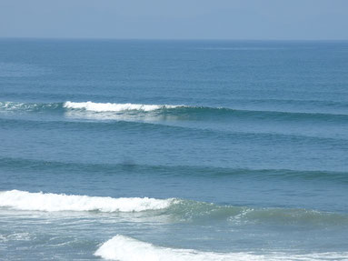 注)ちなみに昨日の波です。11時ごろ♪