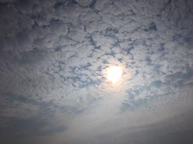 雲が秋めいてきましたね・・