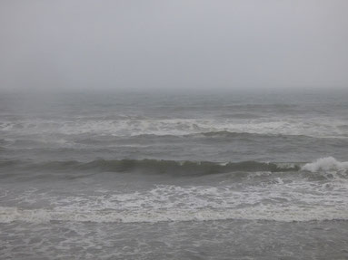 17時過ぎ風は弱まりましたが、波はまとまっておらず豪雨。