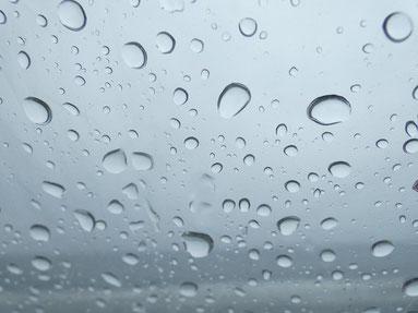 今日は雨が降ったり止んだりの一日でした。