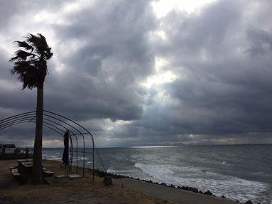 午前中は雲が厚かった・・