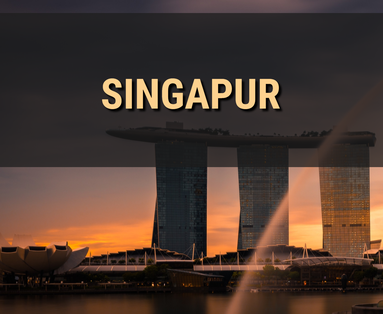 Singapur, Changi, Merlion, Marina Bay Sands, Clarke Quay, Helix Bridge, Marina Barrage, Flower Dome, Cloud Forest, Gardens by The Bay, Lantern, Fullerton Hotel, Little India, Kampong Glam, Arab Street, Chinatown, Orchard Road, Esplanade Bridge, The Float,