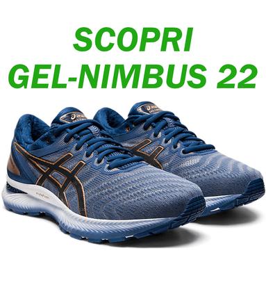 Gel Nimbus 22 Asics