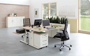 Schreibtische mit Rollcontainern, Sideboards, Blumenkästen