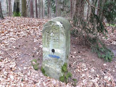 Typisch auch für den Pfälzer Wald sind Grenzsteine aus dem 18. und 19. Jh.