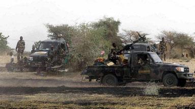 Soldati delle forze armate camerunensi