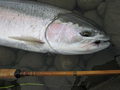 Edwards Quadrate Bamboo Rod Steelhead