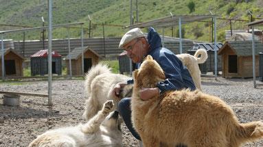 Tierheim Bitlis (Südostanatolien)