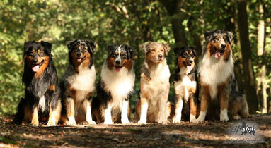 Family: Vollbruder LOGAN, COBIE, Vollbruder CHANNING, Mama RACHEL, Halbschwester FAIRY, Halbbruder CHESTER