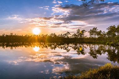 Les luminaires apparaissent dans l'atmosphère. Afin de créer les différents végétaux à la surface de la Terre, une atmosphère chargée en humidité provenant « des eaux du dessus» avait été mise en place le deuxième jour.