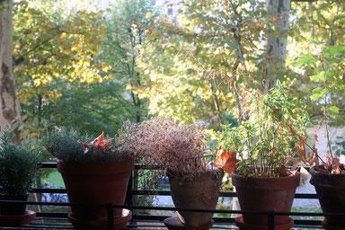 Zu Besuch bei Jutta von meinezeit-blog. Blick vom Balkon...