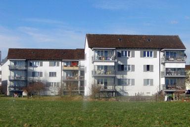 Fassaden-Sanierung/Wohnungs-Sanierungen