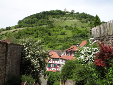 Altstadtblick zur Starkenburg