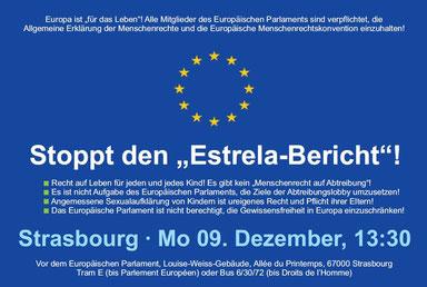 Protest gegen Estrela-Bericht am Montag, 9.12.2013, in Straßburg