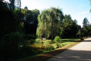Dudweiler, Park, 1937, Stadtpark, Winterbach
