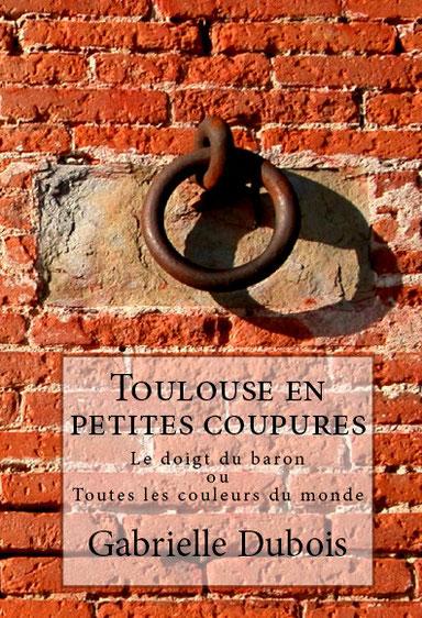 Occitanie historique, roman historique Occitanie, écrivain toulousain, auteur toulousain