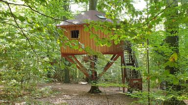 Um einen Baum gebaut, Baumhaus Kobel.