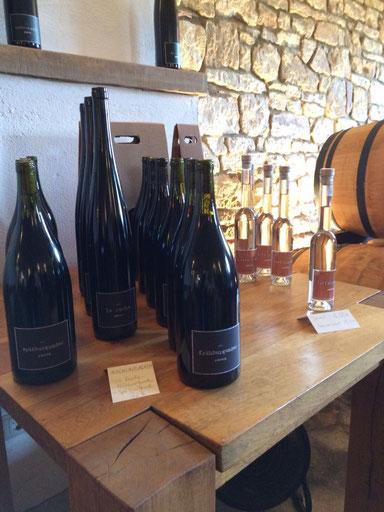 Weingut Bäder in Wendelsheim