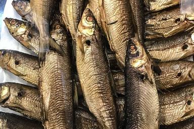 Chiemsee Fische