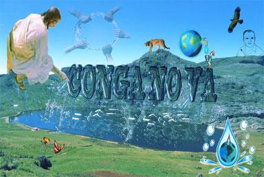 CONGA NO VA