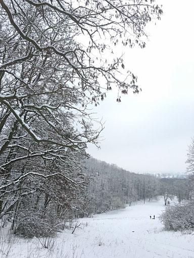 Märkisch Oderland MOL  oderbruch-blog.de