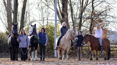 Ein Gastschüler-Aufenthalt mit Freunden macht gleich doppelt so viel Spaß! Wir können bis zu 4 Pferde unterbringen.