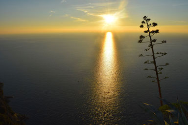 Hike the Cinque Terre - Beautiful Sunsets