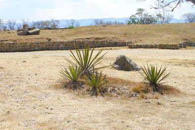 Top Things to Do in Mexico - Montealban