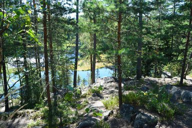 One of Our Short Breaks in Finland - Nuuksio National Park
