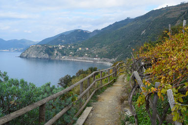 Hike the Cinque Terre - from Corniglia to Manarola