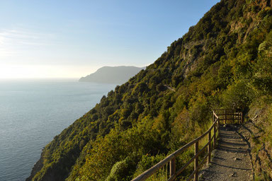 Hike the Cinque Terre - from Vernazza to Corniglia