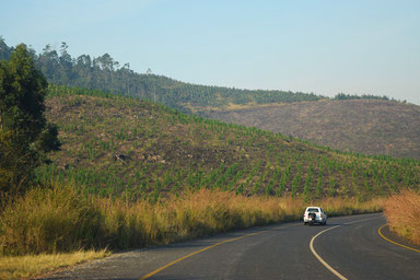 Don't skip the Blyde River Canyon - The Province of Mpumalanga