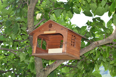 Herbal House Plave, Slovenia - Bird house