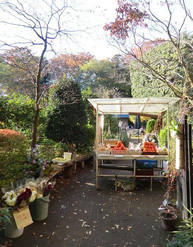 ●道のそばでは、野菜や果物、花などの軒先販売も