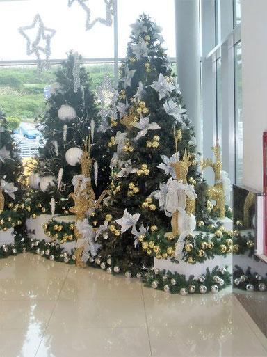 Weihnachten auf Curacao - www.urlaub-auf-curacao.net