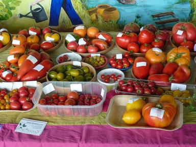 Tomates du jardin d'Alôsnys en août 2016