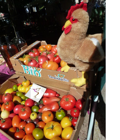 Vente de tomates aux journées romaines le 7 août 2016