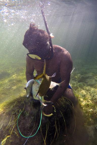 Foto subaquática. Indígena da TI Tirecatinga, em Mato Grosso, com equipamento de pesca subaquática e uma linha com quatro peixes capturados durante o evento de mascreação. Ao fundo do rio há pedras, cobertas com vegetação aquática. Adriano Gambarini/OPAN.