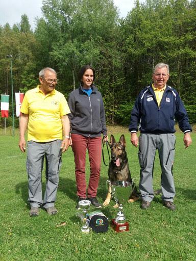 Landesmeisterschaft - 2017 - Campionato Regionale