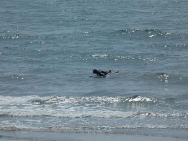 この時は干潮過ぎて波に押されてもフィンが付いてしまうくらい・・