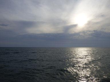南東系の風が吹いて海面はザワついてました。