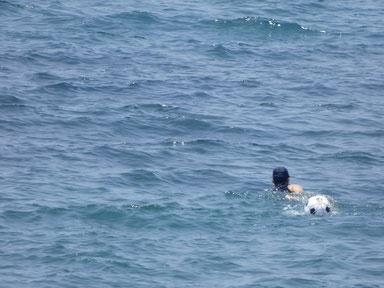 一人遠泳!お疲れさまです。