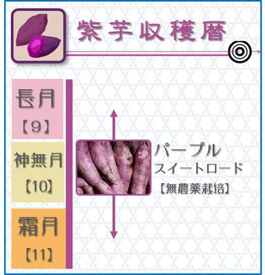 紫芋収穫暦 和×夢 nagomu farm