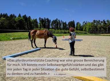 Selbstwertgefühl stärken in einem pferdeunterstützten Coaching_horse-feedback.ch