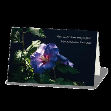 Trauerkarte mit Hibiskusblüte im Sonnenstrahl vor dunklem Hintergrund