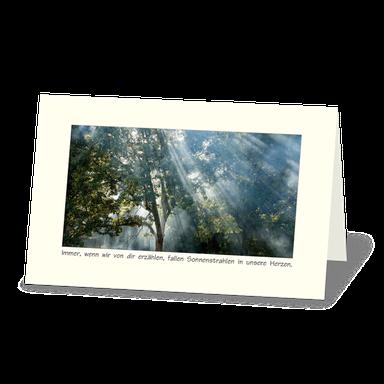 Trauerdanksagung mit Wald. Sonnenstrahlen fallen durch die Baumkronen. Dazu der Vers: Immer wenn wir von dir erzählen, fallen Sonnenstrahlen in unsere Herzen.