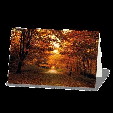 Trauerkarte Stimmungsvoller Waldweg im Herbst, Herbstlaub orange und rot
